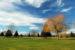 Corte di golf Immagine Stock
