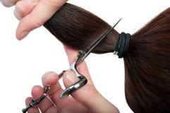 Corte do cabelo Imagens de Stock Royalty Free