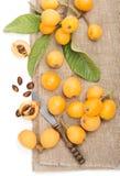 Corte do fruto do Loquat e inteiro imagens de stock royalty free
