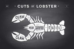 Corte do grupo da carne Diagrama do carniceiro do cartaz e esquema - lagosta ilustração royalty free