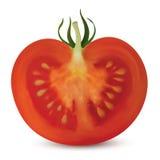 Corte do vertical do tomate Ilustração do Vetor