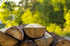 Corte dos logs ao meio em um fundo borrado bonito, close-up imagem de stock royalty free
