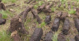 Corte e turfa apropriada do relvado com uma pá no pântano do musgo na Irlanda vídeos de arquivo