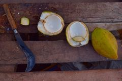 Corte el coco verde blando abierto con la hoz en el vendedor en la India fotos de archivo