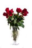 Corte el florero de Glas de rosas rojas en blanco Fotografía de archivo