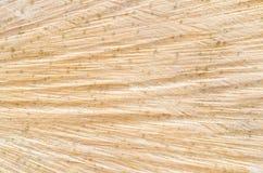 Corte el fondo de la textura del tronco de árbol Imágenes de archivo libres de regalías