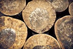 Corte el fondo de los troncos de árbol Foto de archivo
