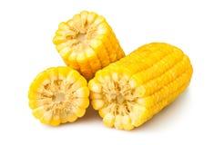Corte el maíz imagen de archivo