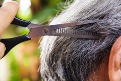 Corte el pelo Foto de archivo