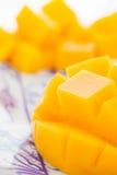 Corte el primer del mango Imágenes de archivo libres de regalías