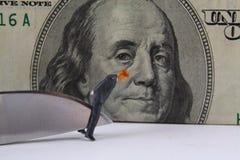 Corte em o orçamento do negócio Imagens de Stock