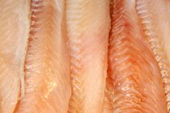 Corte a faixa de peixes vermelhos no contador fotografia de stock royalty free