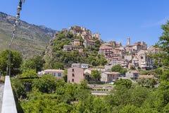 Corte Korsika Royaltyfria Foton