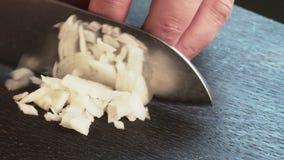 Corte la cebolla con el cuchillo almacen de video