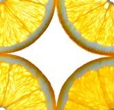 Corte la fruta aislada de la naranja de la fruta cítrica Imágenes de archivo libres de regalías