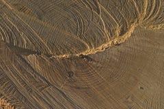 Corte la madera Foto de archivo libre de regalías