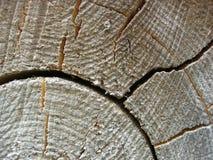 Corte la madera de construcción Fotografía de archivo