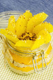 Corte la naranja con las gachas de avena en el pote, capa de jugo Foto de archivo