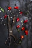 Corte la pimienta roja Foto de archivo libre de regalías