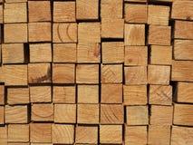 Corte la superficie de una pila de pino vestido crecido plantación Fotos de archivo