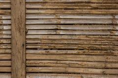 Corte o bambu. Imagem de Stock Royalty Free