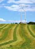 Corte o hayfield, pólo de serviço público Fotos de Stock Royalty Free