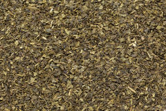 Corte orgánico de la bolsita de té del té verde (sinensis de la camelia), licencia secada Fotografía de archivo libre de regalías