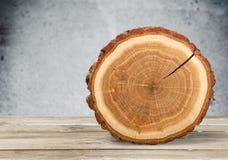 Corte redondo del árbol en fondo de la naturaleza Fotos de archivo