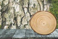 Corte redondo del árbol en fondo de la naturaleza Foto de archivo