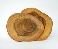 Corte transversal de 2 anillos de árbol Foto de archivo libre de regalías