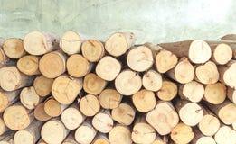 Corte transversal de la madera, pila de la leña Fotos de archivo libres de regalías