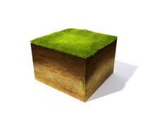 Corte transversal de tierra con la hierba Imágenes de archivo libres de regalías