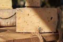 Corte transversal de un bloque de queso con el molde imagenes de archivo