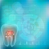 Corte transversal del diente libre illustration