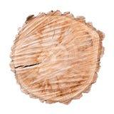 Corte transversal del tronco de árbol aislado en el fondo blanco foto de archivo libre de regalías