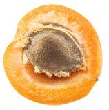 Corte transversal maduro del ` s del albaricoque con la semilla del albaricoque en ella Recortes P imágenes de archivo libres de regalías