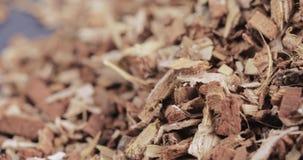 Corteccia della quercia sciolta sulla tavola video d archivio