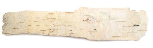 Corteccia di betulla fotografie stock libere da diritti