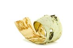 Corteccia di betulla su un fondo bianco fotografie stock