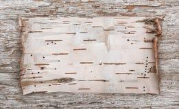 Corteccia di betulla sul vecchio legno Fotografia Stock
