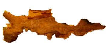 Corteccia di pino incrinata isolata su fondo bianco, manip della foto Immagini Stock Libere da Diritti