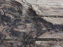 Corteccia di struttura di Brown di vecchio legno con le macchie e le crepe Immagini Stock Libere da Diritti