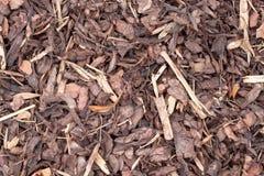 Corteccia grezza Fotografie Stock