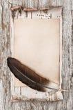 Corteccia invecchiata della carta, della piuma e di betulla sul vecchio legno Fotografia Stock