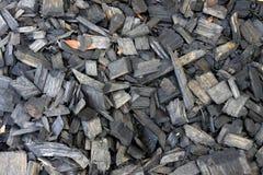 Corteccia nera della pepita Fotografie Stock Libere da Diritti