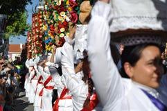 Cortejo rektor, Festa DOS Tabuleiros Royaltyfri Fotografi