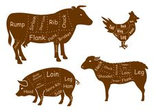 Cortes da carne da carne, da carne de porco, da galinha e do cordeiro Foto de Stock Royalty Free