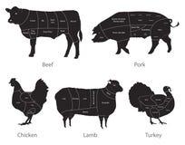 Cortes da carne do animal de exploração agrícola