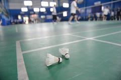 Cortes de badminton com jogadores fotografia de stock royalty free