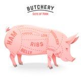 Cortes de carne de porco ilustração do vetor
